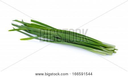 fresh chinese chives on a white background