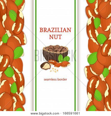 Brazil nut vertical seamless border. Vector illustration with composition of a delicious brazilian nut fruit in the shell whole shelled leaves appetizing looking for packaging design healthy food