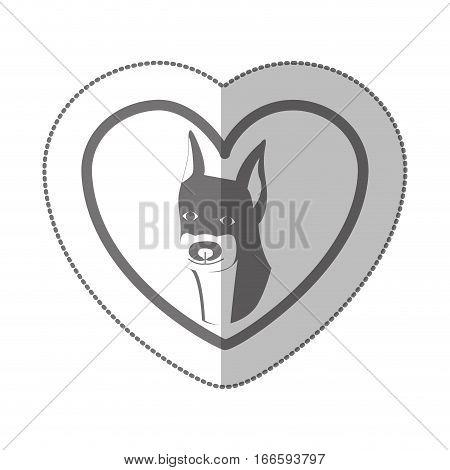 grayscale silhouette middle shadow sticker with doberman pinscher inside of heart vector illustration