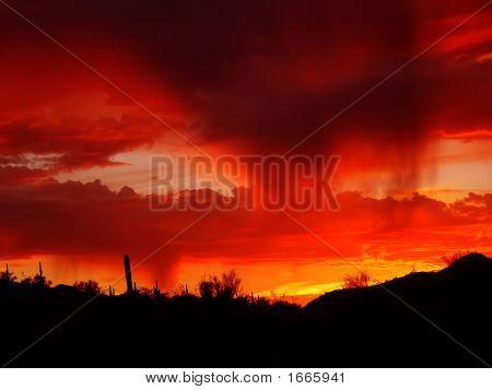 Desert Rain At Sunset