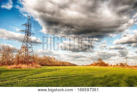electric pillar of green wheat field. A close up
