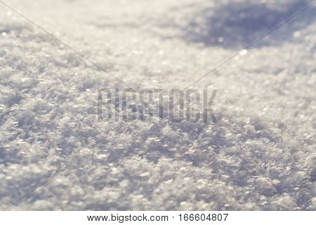 Fresh Snow Macro