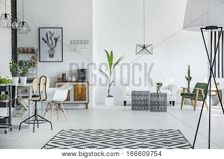 White and spacious multifunctional room in scandi style