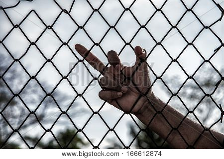 Hand With Mesh Cage, Hands With Steel Mesh Fence.