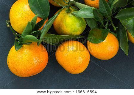 Citrus Fruits Closeup