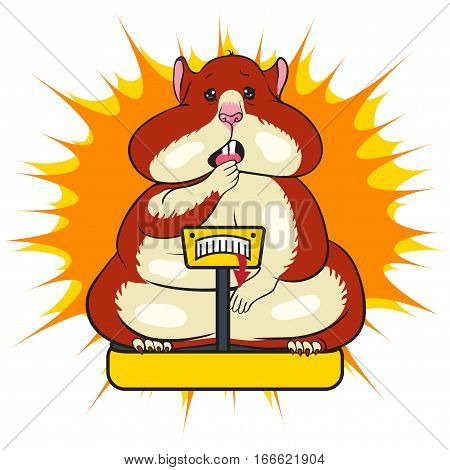 vector illustration karakatura fat funny hamster with brown spots, surprised muzzle standing on the scales on a background of yellow stars