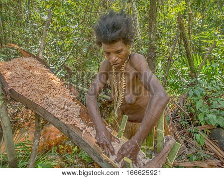 Woman Of The Nomadic Forest Tribe Korowai