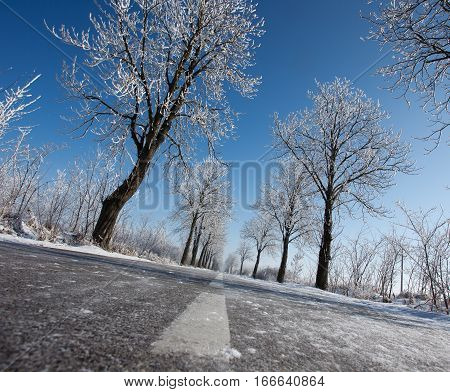 Winter Road In Plains