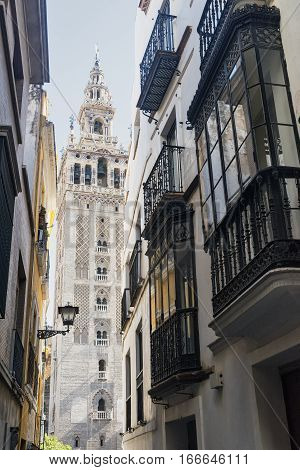 Sevilla (Andalucia Spain): the Giralda belfry of the cathedral and old street with typical verandas