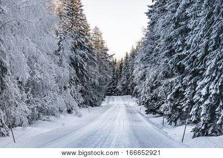 View of a slippery winter road on the Swedish country side Sun is shining. and snow and ice is hanging from the trees.