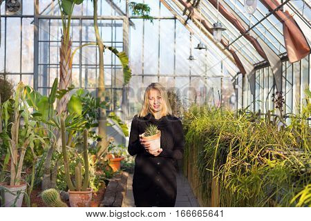 Portrait of florists woman working with flowers in a greenhouse holding a pot plant in her hand. Small business owner.