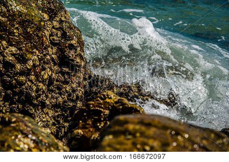 sandy beach near the blue sea. sandy beach by the blue ocean. golden sand on the shores of the ocean. Ocean waves breaking on the rocks on the shore.