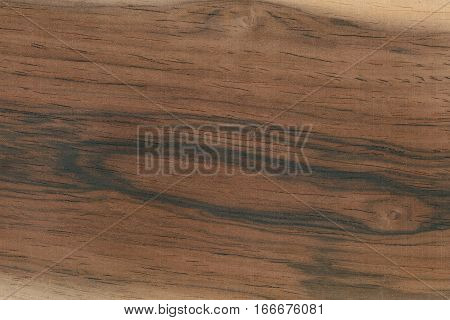 Rosewood- Brazil (Dalbergia spp.) Brazil. Showing the wood grain and pattern typical of this tree.