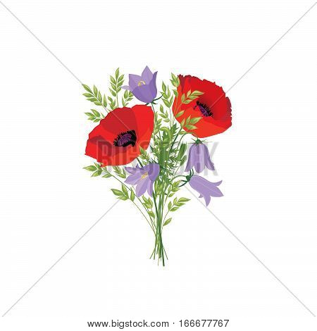 Flowers Isolated. Floral Summer Bouquet. Meadow Nature Decor With Bluebells And Red Poppy
