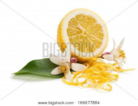Zest and flower and lemon fruit isolated on white background.