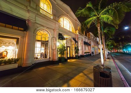Palms in Rodeo Drive at night in California