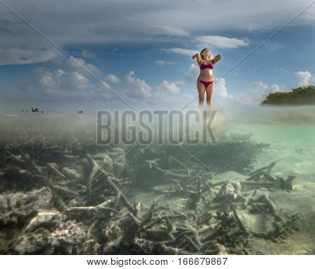 Underwater photo of environment of Maldivian island
