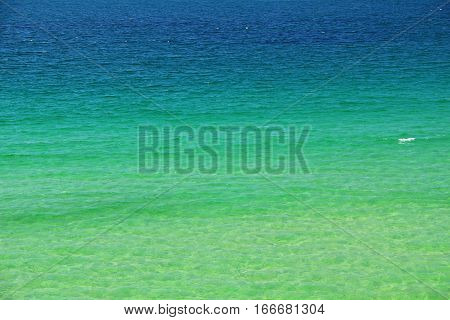 Background: green seawater on the coast of Brittany