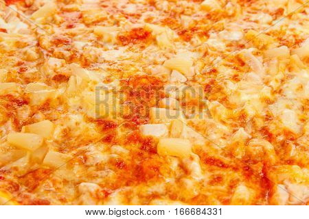Background from delicious classic Hawaiian Pizza with chicken pineapple oregano and cheese isolated on white background