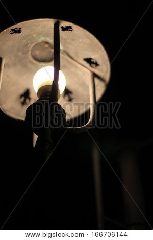 Romantic Night Streetlight Lamp