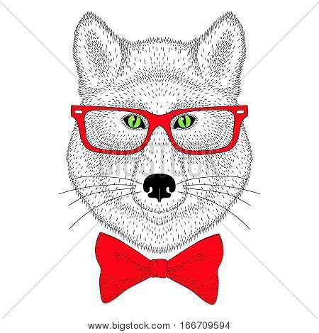 Cute wolf portrait, face with bow tie, glasses. Hand drawn anthropomorphic fashion animal illustration for t-shirt print, kids greeting card, invitation for gentleman party, tattoo design.