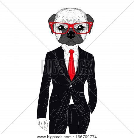 Vector brutal french bulldog in elegant classic suit. Hand drawn anthropomorphic dog with glasses, illustration for t-shirt print, kids greeting card, invitation for pet party.