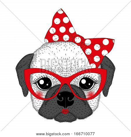 Cute french bulldog girl portrait with pin up bow tie, kat eyes glasses. Hand drawn dog face, anthropomorphic fashion pug illustration for t-shirt print, greeting card, invitation for pets party.