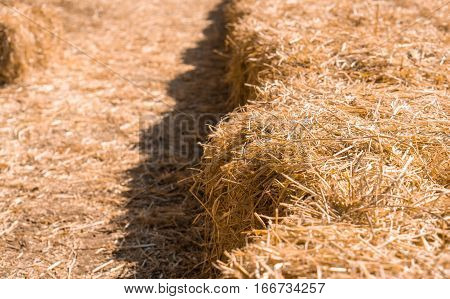 Farm and haystack background concept - Close up haystack for sit and copyspace
