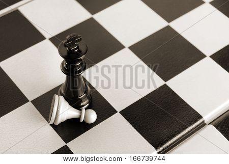 Black King Wins White Pawn