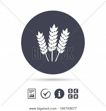 Agricultural sign icon. Gluten free or No gluten symbol. Report document, information and check tick icons. Currency exchange. Vector