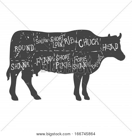American cuts of beef, vintage typographic hand-drawn butcher cuts scheme diagram
