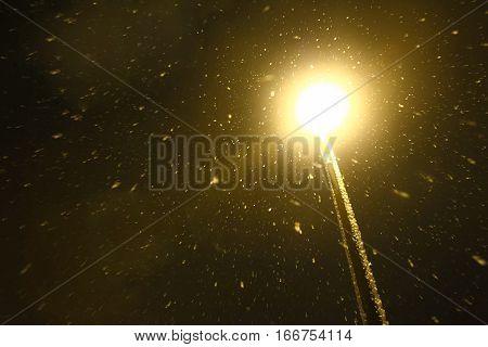 Street Lamp In Blizzard