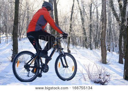 Mountain Biker Riding Bike on the Snowy Trail in the Beautiful Winter Forest Lit by the Sun