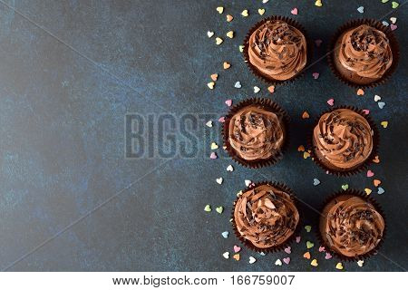 Chocolate cupcakes on a blue background top view