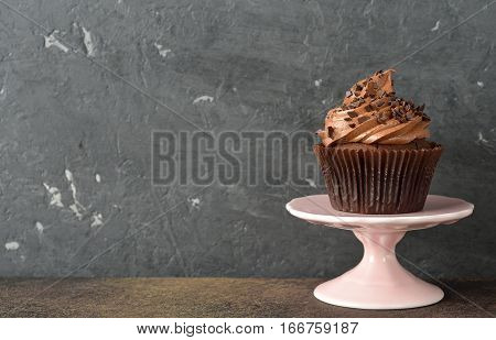Chocolate cupcakes on a gray background close up