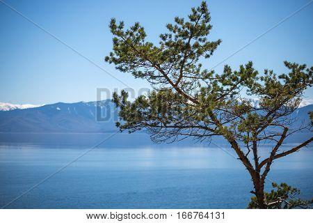 Majestic Lake The Baikal