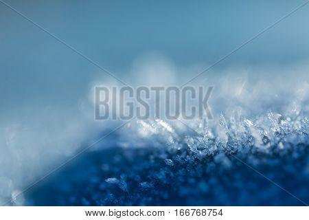 Snow Crystals In Beautiful Macro