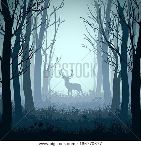 Vector illustration of Deer in autumn misty forest background