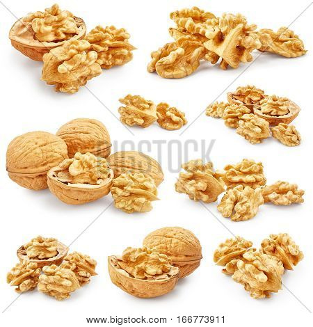 Set of walnuts isolated on white background