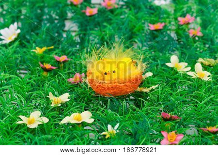 Easter setting with chickens on grass background.
