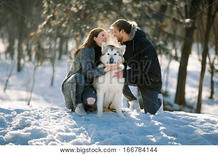 Girl and guy for walk in winter forest with dog malamute. They sit hold dog and fun laughing.