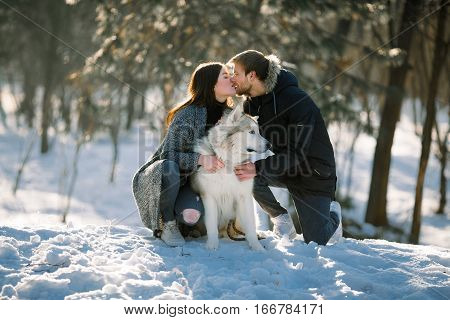 Girl and guy for walk in winter forest with dog malamute. They sit hold dog and kiss.