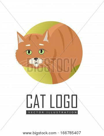 Aggressive or frightened red cat with arched back flat vector illustration isolated on white background. Domestic animal emotions and behavior. For pet shop ad, animalistic hobby concept, breeding