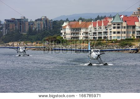 Seaplanes taxiing in Victoria harbour, Vancouver Island