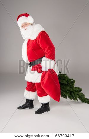 Happy Santa Claus carrying a fir tree and a sack on white