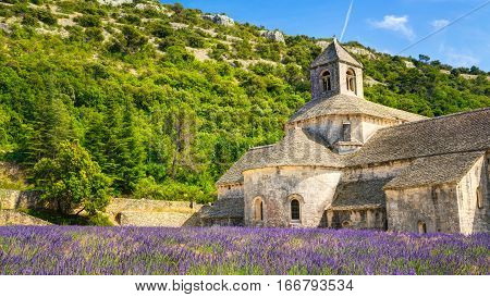 Beautiful landscape lavender field and an ancient monastery Abbaye Notre-Dame de Senanque, Notre-Dame de Senanque abbey, in Vaucluse, France
