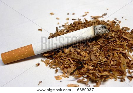 a lighted cigarette and tobacco on a white background