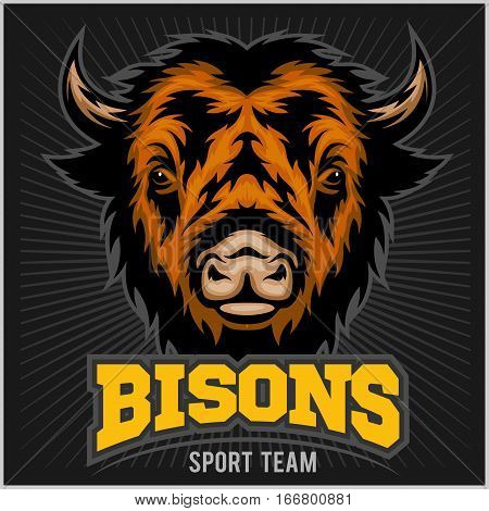 Buffalo head with horns. Logo Bisons for any sport team bison