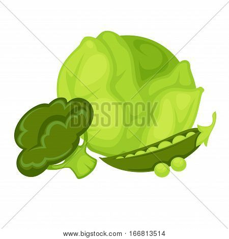 Green healthy vegetables collection. Icon with organic vegetarian food peas, broccoli and cabbage. Bloating and gas producing product set. Vector illustration isolated on white. Design element in cartoon style