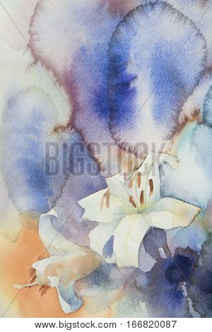Watercolor white lily flowers on color background. Hand drawn illustration. Summer emotions